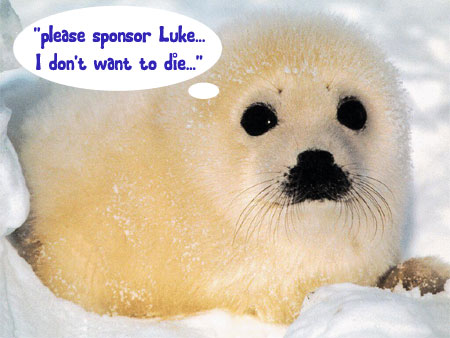 sponsor me or the seal gets it