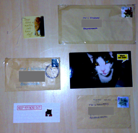 cat stalker mail