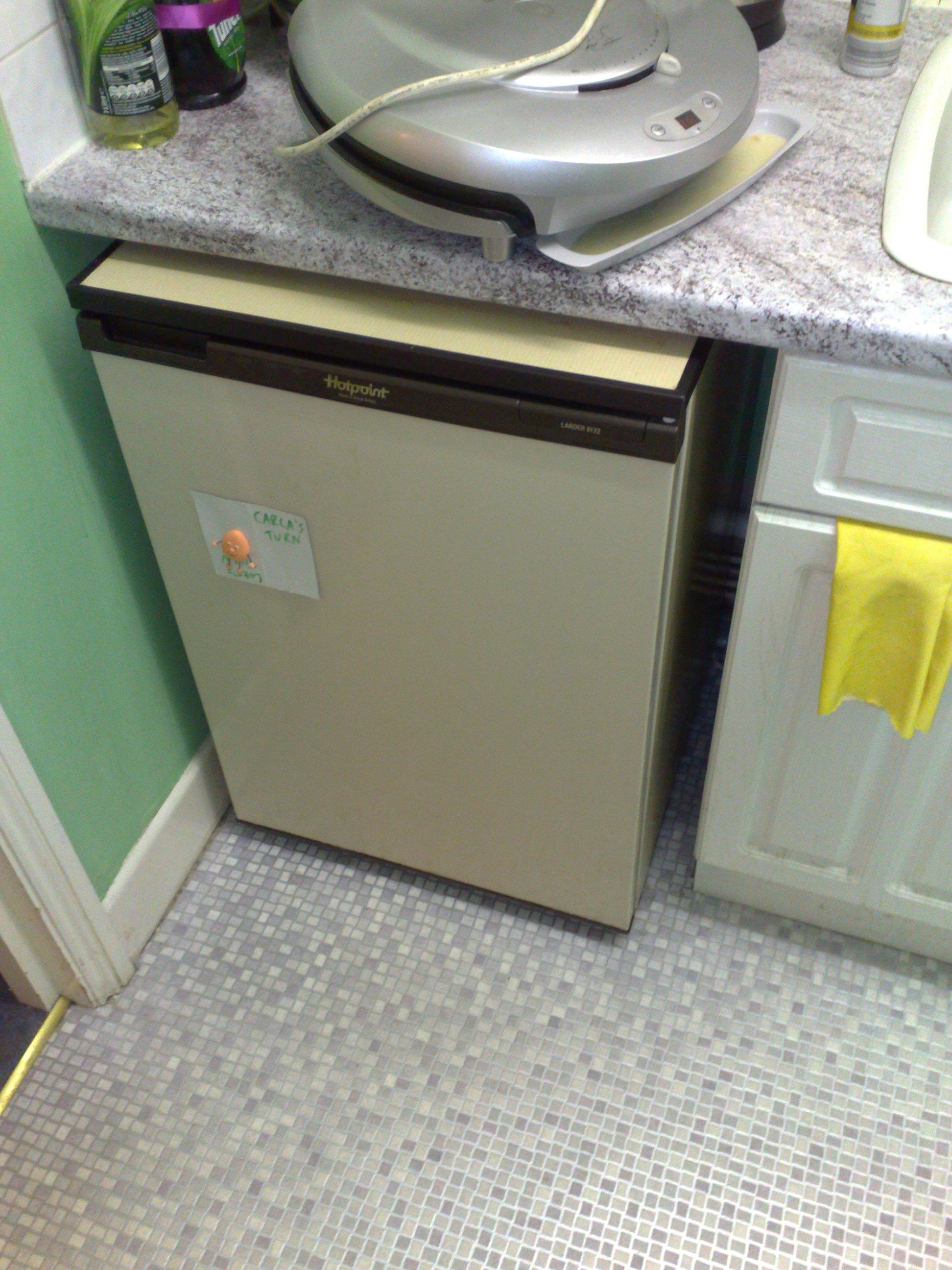kitty fridge